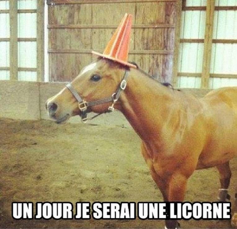 Un jour je serai une licorne