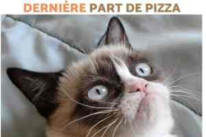 Ma tête quand on m'annonce que quelqu'un à mangé la dernière part de pizza