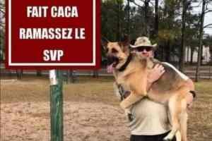 Si votre chien fait caca ramassez le SVP