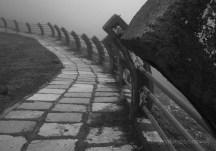 Path thru the mist