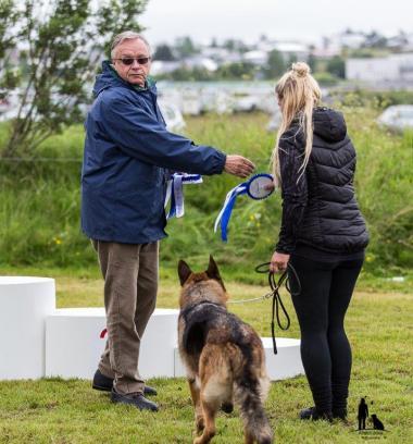 Hundasýning 23.07.2016 Víðidal nr 2 130