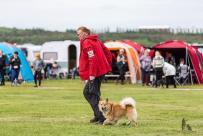 Hundasýning 24.07.2016 í Víðidalnum 212