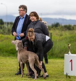 Hundasýning 24.07.2016 í Víðidalnum 862
