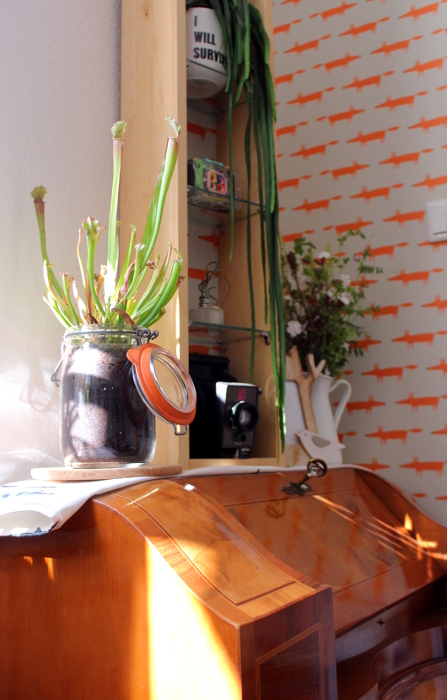 Mustertapete in Zimmer mit Kommode