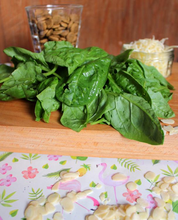 Leckerli aus Trockenfutter Rezept Spinat Hundekekse
