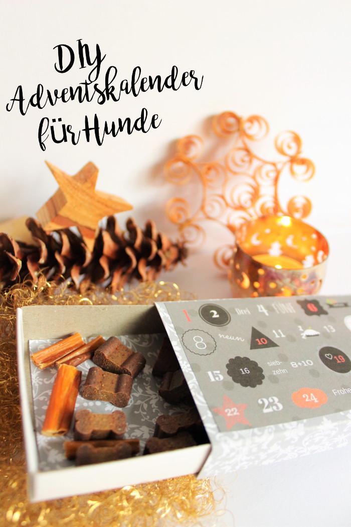 adventskalender-fuer-hunde-diy-weihnachten-selbermachen-geschenk ...