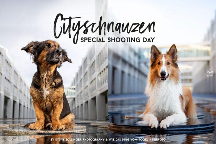 Cityschnauzen Special Shooting Day