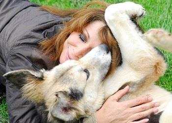 Das Herz der Hundehilfe Russland blutet