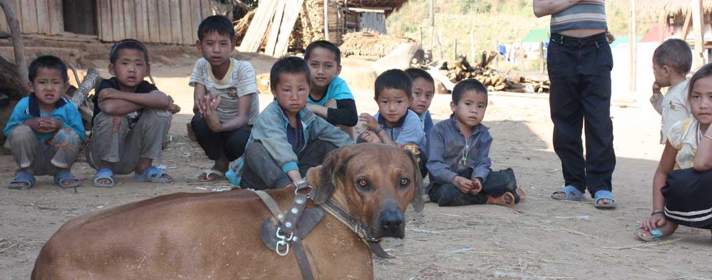 Mit dem Velo und Hunden um die Welt, Teil 18