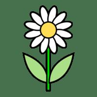 Bilderesultat for blomst