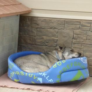 Martyna i sin egen säng