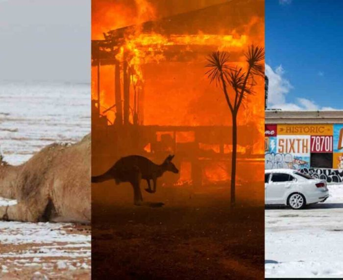 7 apocalyptic climate change predictions that are already happening