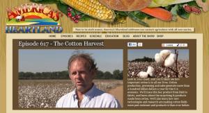biotech GMO cotton farmer Jay Hardwick