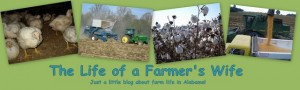 The Life of a Farmer