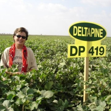 sign in a cotton field with farmer