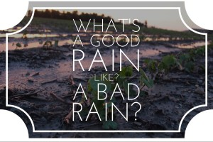 good or bad rain