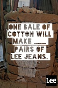 one bale of cotton will make ____ pairs of Lee Jeans