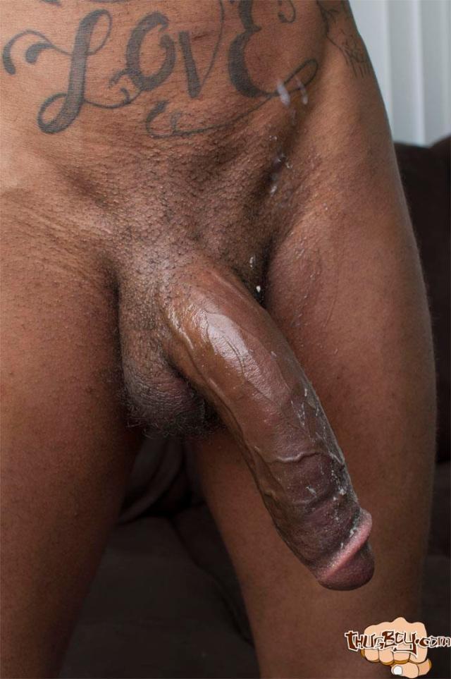 Big Black Cock Wife Thrown Ou Naked Lulu Shemale Transex Travesti Efe