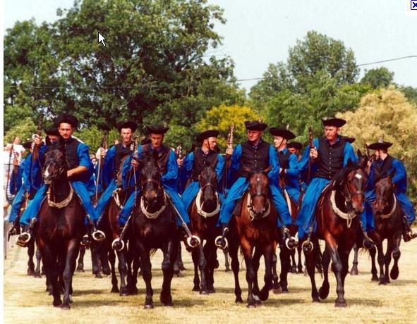 Hortobagyi lovak