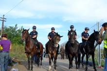 Hungarian mounted police patrol the border.