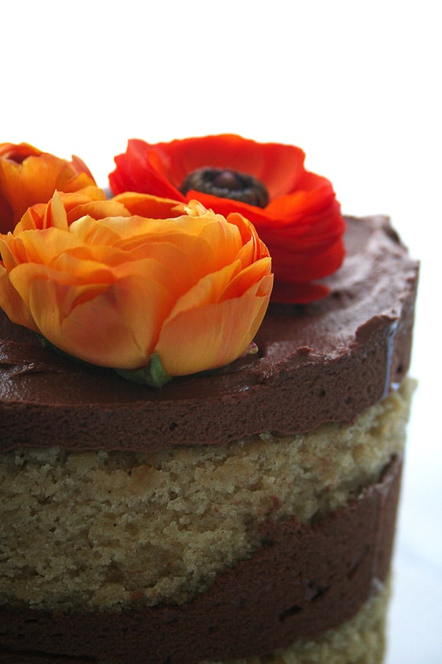 tahini cake with chocolate tahini frosting with orange ranunculus flowers on top