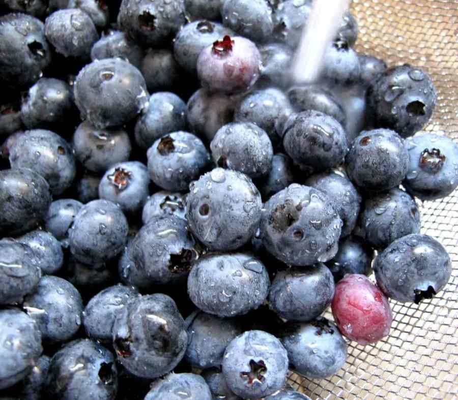 How would blueberries taste once fried?