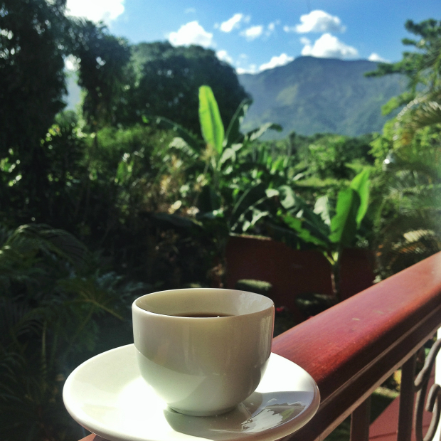 coffee-cafe-dominican-republic