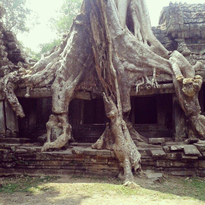 Angkor: der letzte Tag (nicht mit dem Fahrrad)