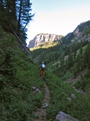 No name trail, this part with an actual trail to ride on