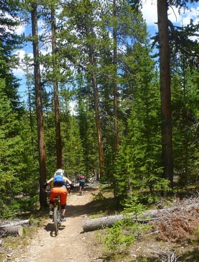 Colorado Trail, Brekkenridge