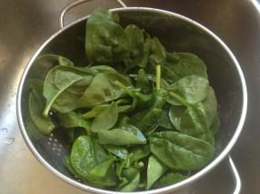 HL_spinach