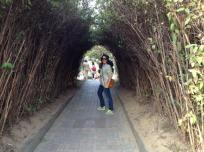 We found the Hobbit tunnel!