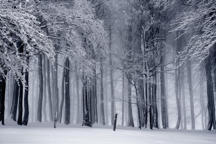 When is Winter in Japan