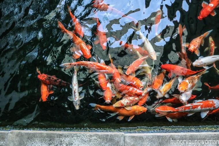 fish in the water - bintan itinerary