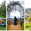 Ooty is famous for lush greenery, cold climate, and also once compared to Switzerland. In this guide, I tell you the best places to visit in Ooty in 3 days