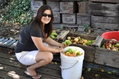 Filling Bucket with Apples for the Cider