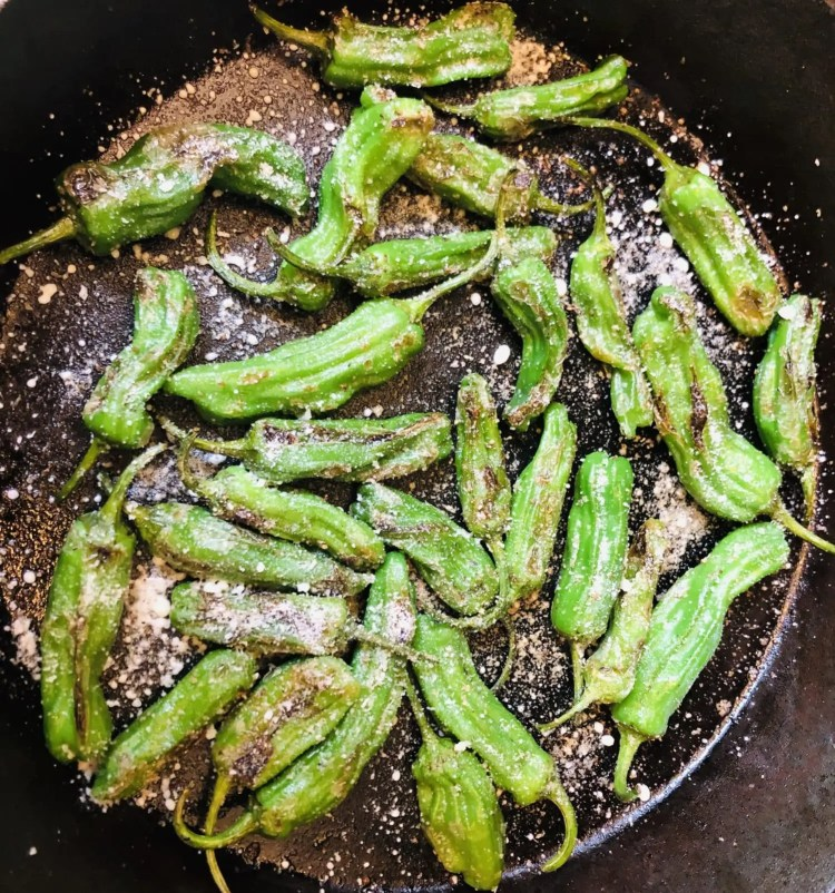 Easy Blistered Shishito Peppers