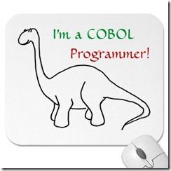 cobolprogrammer