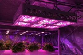 best led light for 4x4 grow tent
