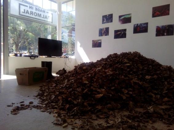 Für die Installation wurde ein Anhänger voll Laub aus einem Privatwald in Rhens in den Ausstellungsraum gebracht