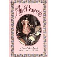 A Little Princess Book Cover