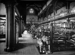 interior of museum in 1907