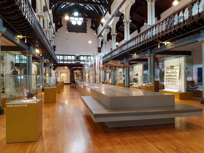 The Hunterian museum main hall