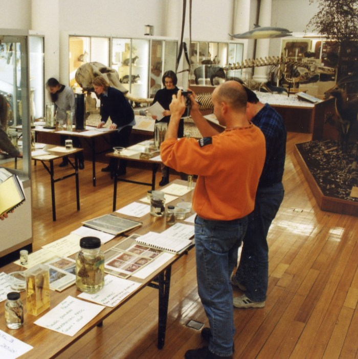 Students in the Zoology Museum working with specimens.