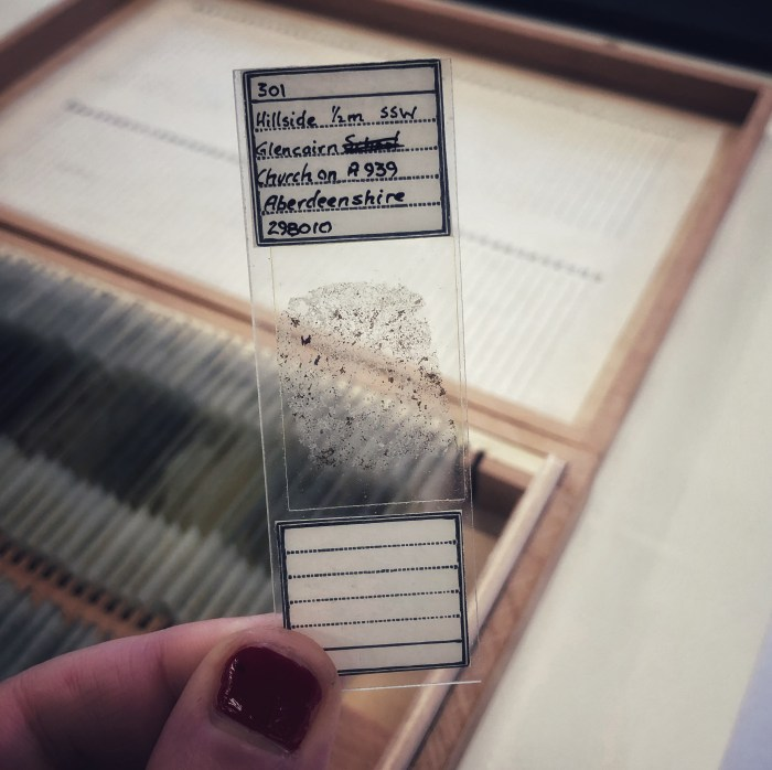 Microscope slide.
