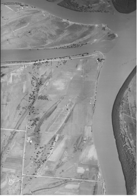 1946 Aerial View of Scott's Point Ash Island (Thanks to Karina Keeton, Kooragang Wetlands Rehabilitation Project)