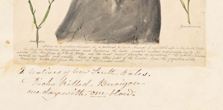 Text detail from illustration of Burigon or Jack and Dick, from the Wallis Album (Courtesy of the State Library of NSW)