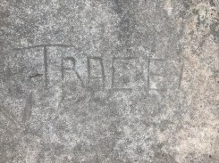 Example of vandalism to site