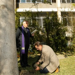 Laurie Tremenheere placed the ashes of the Professor under the tree.