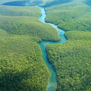 HuntersWoodsPH | Rivers of the World | Amazon